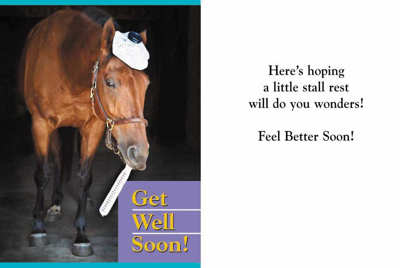 Greeting cards equiworld ltd specialist equestrian retail and equine get well m4hsunfo